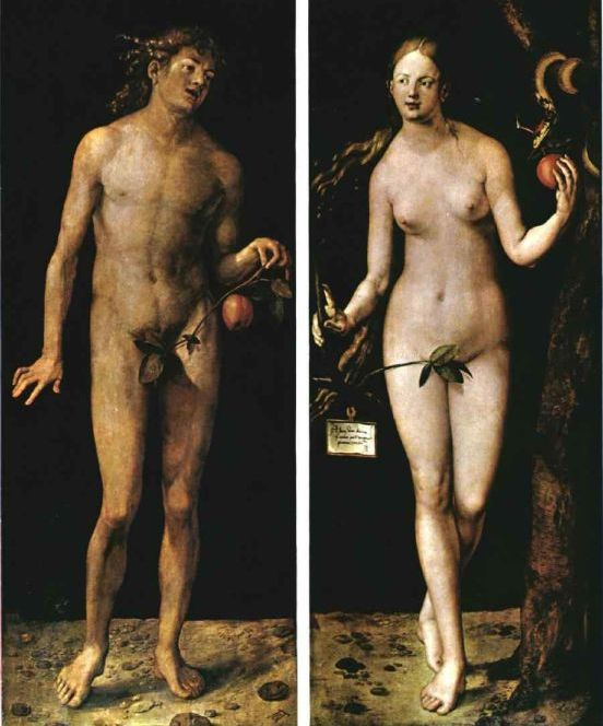Albrecht Durer Adam And Eve 1507 Adam And Eve Durer Durer